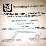 Dr. Camelo Advanced Laparoscopic Surgery Certificate