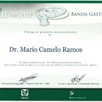 Dr. Mario - Gastric Band Fellowship