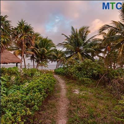 Medical Tourism Destination | Mayan Riviera, Mexico
